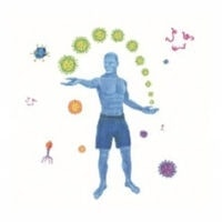 modul 4 die praesenz des immunsystems