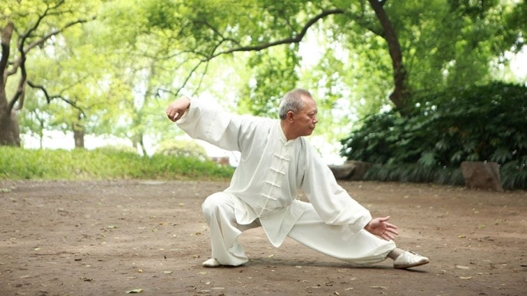 illustration of a tai chi master