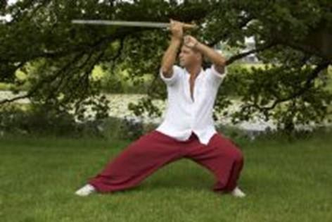 illustration of tai chi weapons training