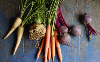 Macrobiotics – Philosophy, Nutrition & Medicinal Cuisine