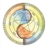 modul 6 inyologie die detailiierte lehre von yin und yang